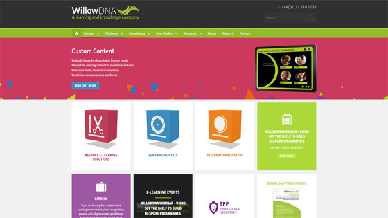 WillowDNA bespoke elearning solutions
