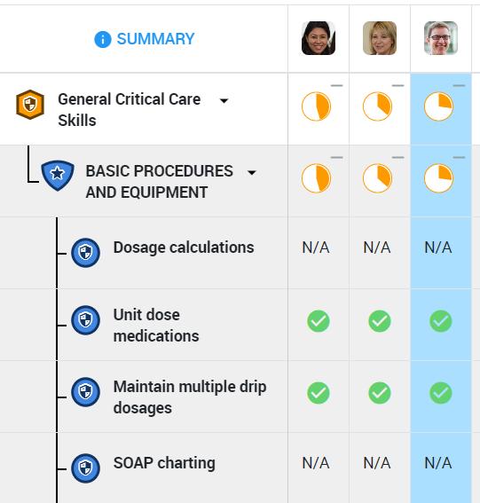 Healthcare skills matrix